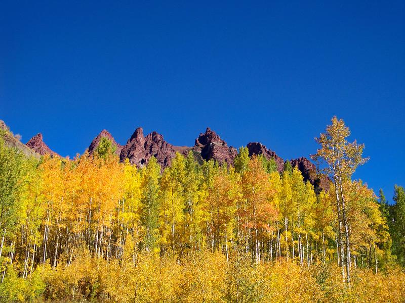 Red rock spires rise above the changing aspens, Colorado Elk Range.