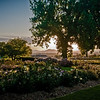Sunset from the Rose Garden near Stern park in Littleton, Colorado.