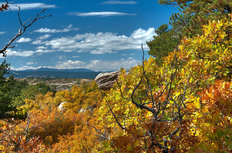 Fall colors in Castle Rock, Colorado