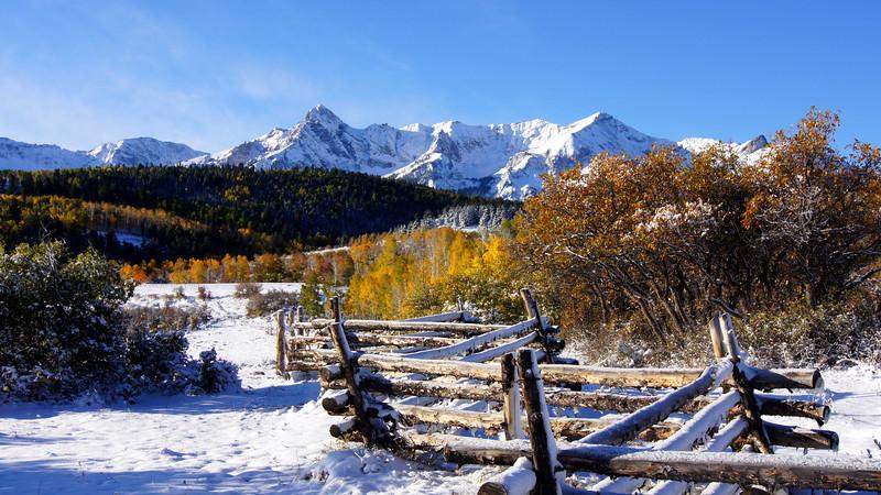 Early autumn snow on an aspen bole fence in the San Juan Mountains, Colorado Dallas Divide.