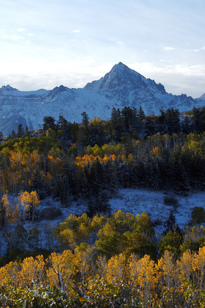 The icy north face of Mount Sneffels forms a stark backdrop to the autumn colors; Colorado San Juan Range.