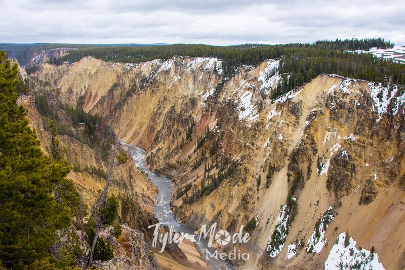 74  G Grand Canyon of Yellowstone