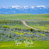 88  G Idaho Views Road