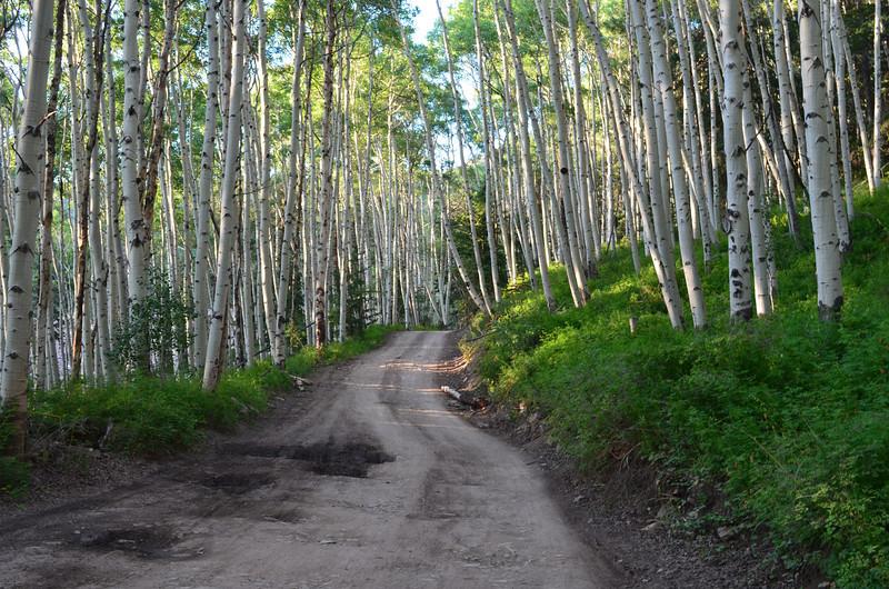 Last Dollar Road, Telluride, CO