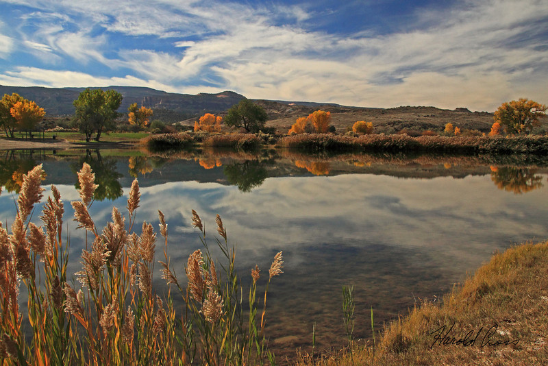A landscape taken Oct. 29, 2010 in the Colorado River State Park at  Fruita, CO.