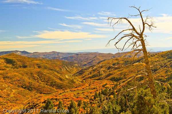 A landscape taken Oct. 16, 2011 near Douglas Pass in western CO.