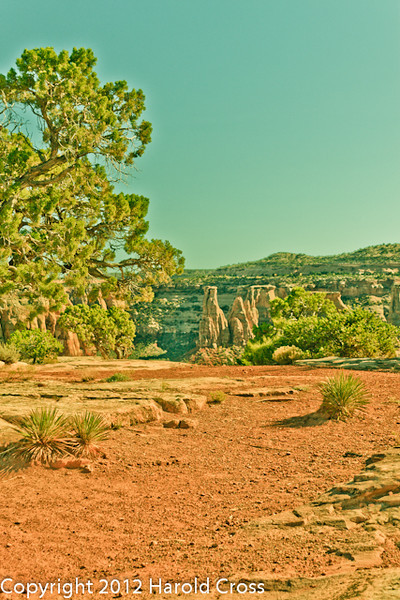 A landscape taken Oct. 17, 2011 in the Colorado National Monument near Fruita, CO.