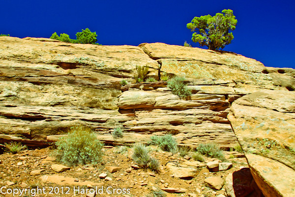 A landscape taken Apr. 21. 2012 on the Colorado National Monument near Fruita, CO.