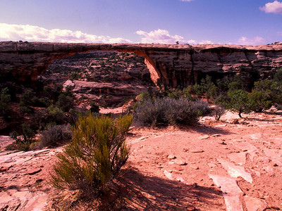 Natural Bridge Mounument in Utah