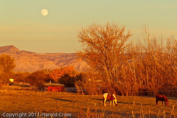 A landscape taken Nov. 8, 2011 near Fruita, CO.