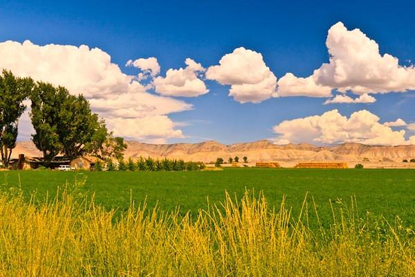 A landscape taken Aug. 20, 2011 near Fruita, CO.