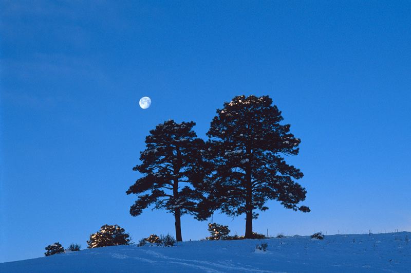 Moonset at sunrise in the foothills