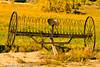 A landscape taken Oct. 14, 2011 in Grand Junction, CO.
