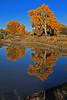 A landscape taken Nov. 4., 2010 in Grand Junction, CO.