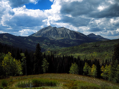 Gunnison National Forest from Cottonwood Pass