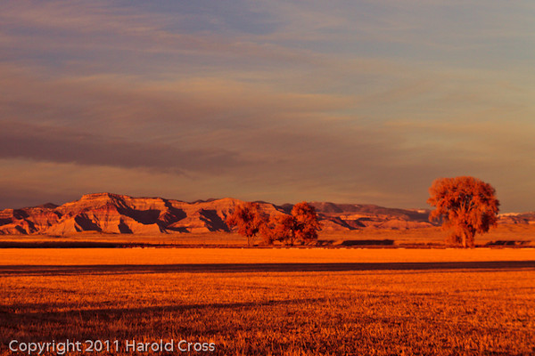 A landscape taken Nov. 18, 2011 near Fruita, CO.