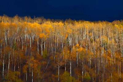 Beaver Creek  10 11 11  012 - Edit