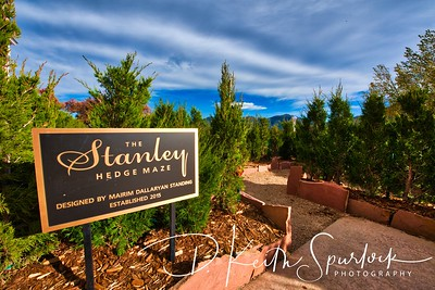 The Stanley Hedge Maze