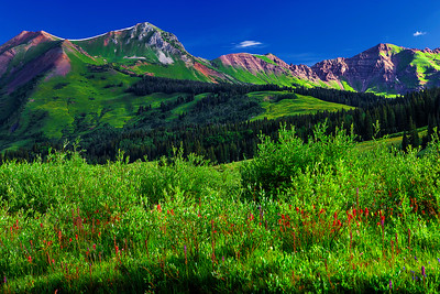 Colorado, Crested Butte,  Gothic