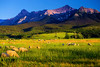 Colorado, Ridgway, Last dollar, Road , Mount Sneffels, Sunset
