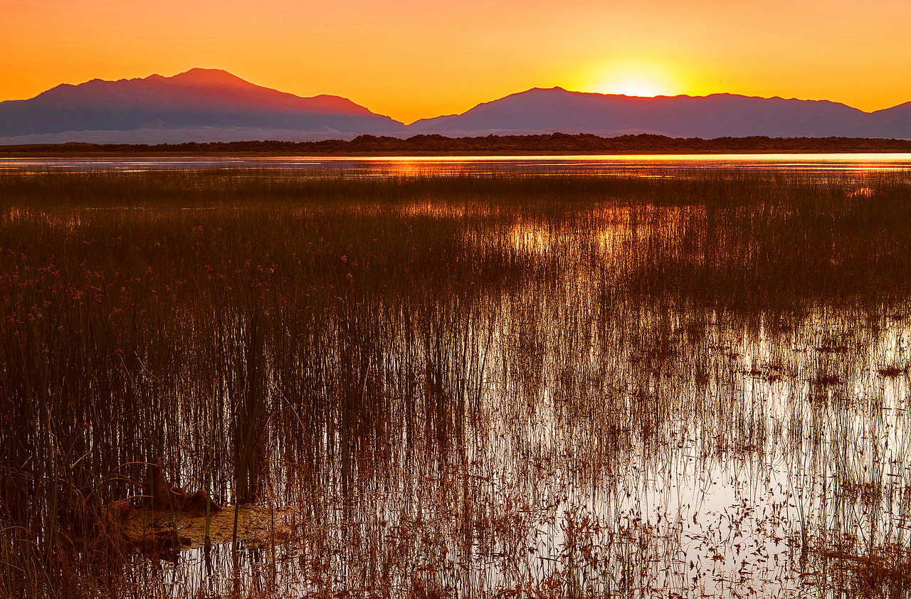 Colorado, Alamosa, San Luis Lakes State Park, Sunrise