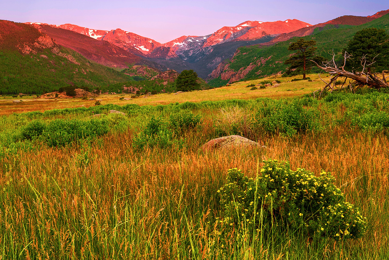 Colorado, Rocky Mountain National Park, Moraine Park, Sunrise