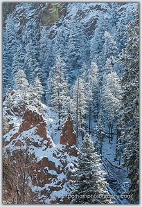 Winter Canyon Light