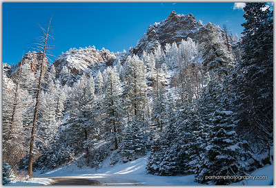 Winter Spires