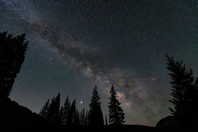 Milky Way Over The Forest  (WC-20127)