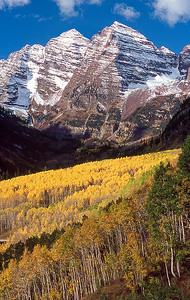 Bells and Aspens  (MB-04501)