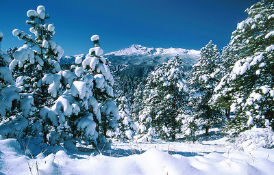(B022)  Fresh snow on Pikes Peak and Pike National Forest