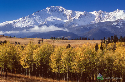 Pikes Peak - Autumn  (PP-05304)