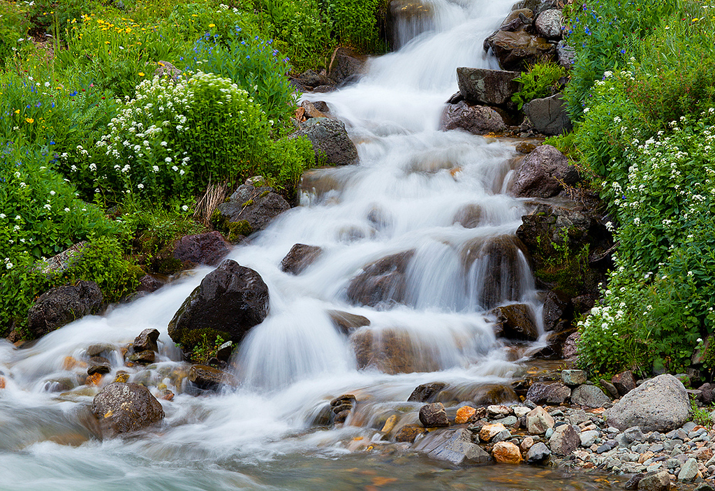 (SJ-11266)  Cascading tributary of the upper Animas River near Animas Forks.