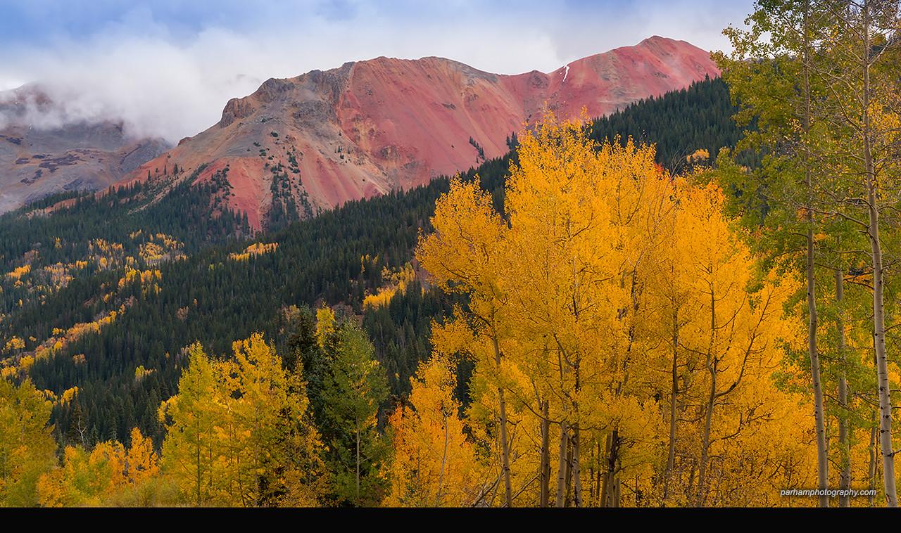 Red Mountain Autumn  (SJ-16820)