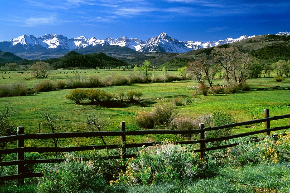 (I025)  Springtime Pastoral - Sneffels Range.