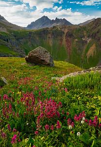 (SJ-18119)  Governor Basin Wildflowers