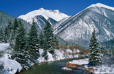 """(I003)  """"Winter's Last Stand"""" along Mineral Creek."""