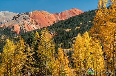 (SJ-20307)  Red Mountain No. 1 in Autumn