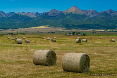Hay Rolls and Sangres  (SC-19015)