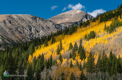 Autumn colors below Quandary Peak  (CM-19531)