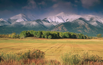 (A074)  Late Summer Pastures Beneath the Sawatch Range