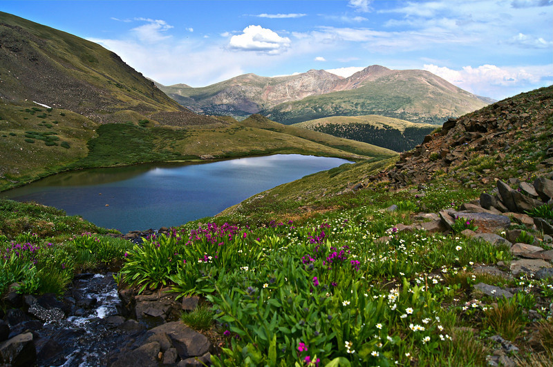 Squaretop Mountain Lakes, a hidden treasure of streams, lakes and wildflowers; Mt. Evans, Mt. Bierstadt and Guanella pass constitute the view directly east; Colorado Front Range.