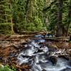 Calypso cascades on trail to ouzel falls