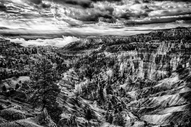Bryce Canyon drama in black and white