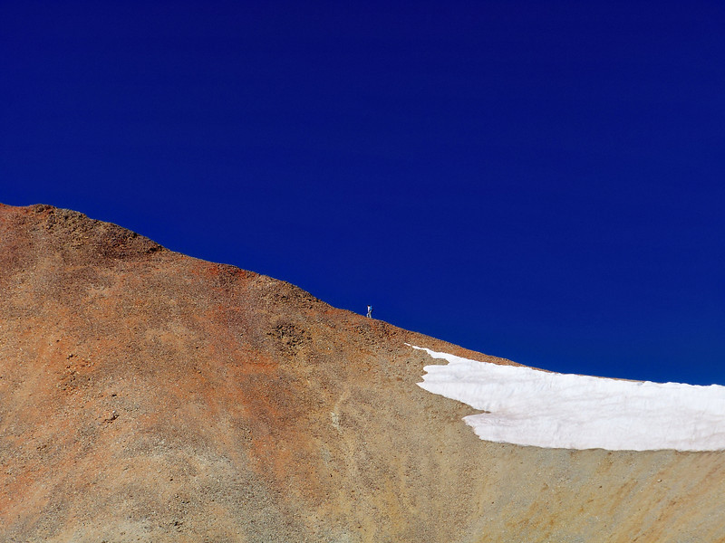 A lone hiker ascends the Redcloud north ridge, Colorado San Juan Range.