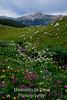 Colorado (Copper Mountain)