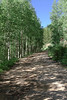 Old Lime Creek Road
