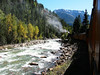 Durango/Silverton Narrow Gauge train along the Animas River