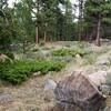 CO-2008-0726-4295