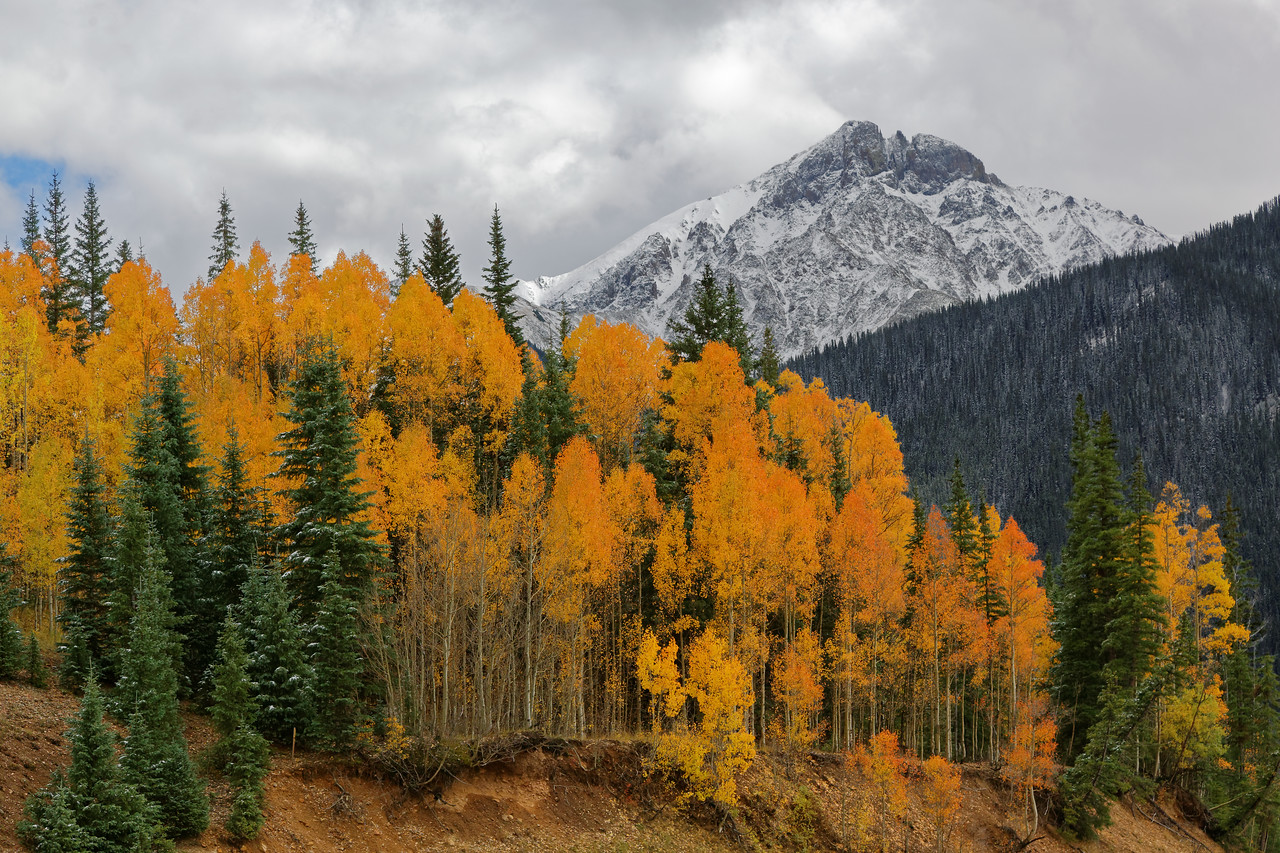 IMAGE: https://photos.smugmug.com/Landscapes/Colorado/San-Juans-2016-09-24/i-MRRMF6h/0/X2/5D3_9883_DxO11_Merged_V1-XL.jpg